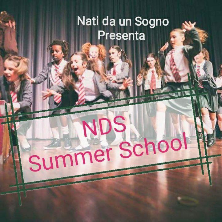 NDS Summer School